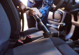 Ratgeber: So entfernst du Hundehaare aus dem Auto